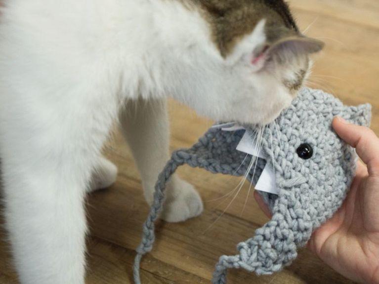 Cómo hacer un gorro de crochet en forma de tiburón para gatos ...